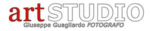 artstudioguagliardo300